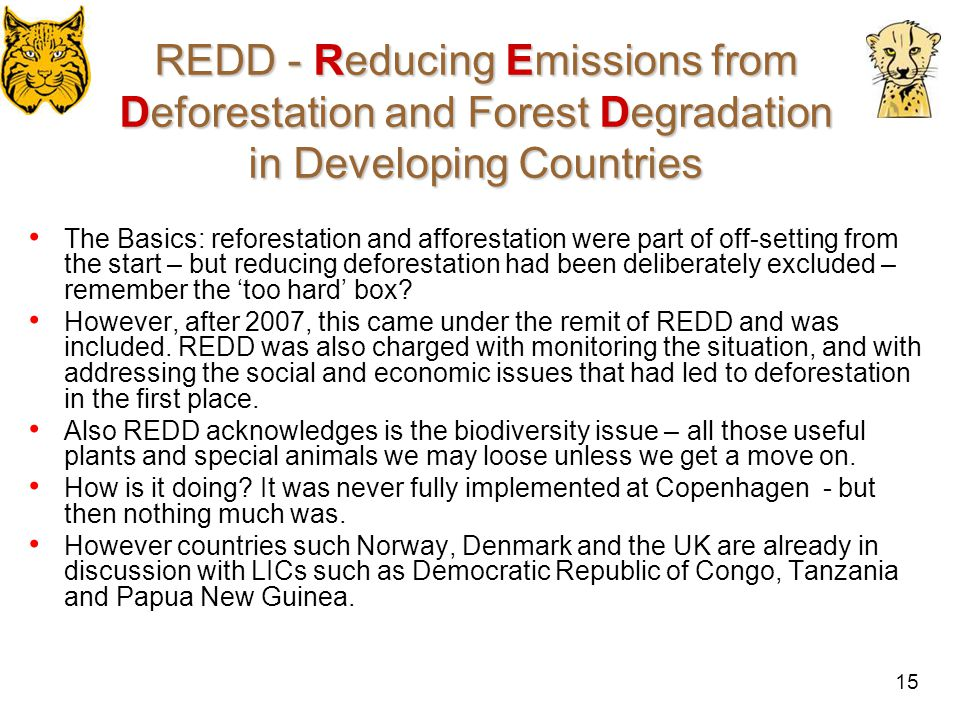 REDD - Reducing Emissions from Deforestation and Forest Degradation in Developing Countries