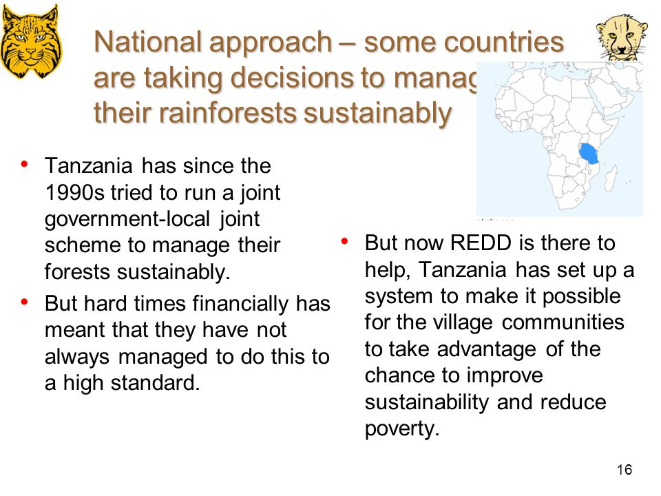 National approach – some countries are taking decisions to manage their rainforests sustainably