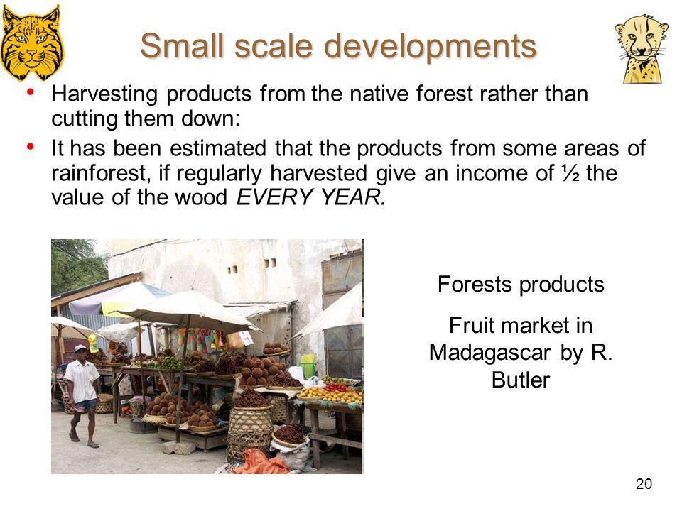 Small scale developments