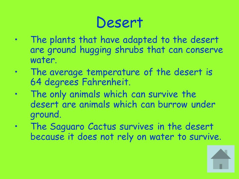 Desert The plants that have adapted to the desert are ground hugging shrubs that can conserve water.