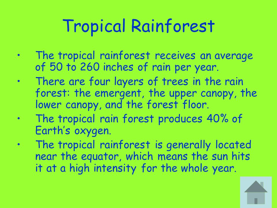 Tropical Rainforest The tropical rainforest receives an average of 50 to 260 inches of rain per year.