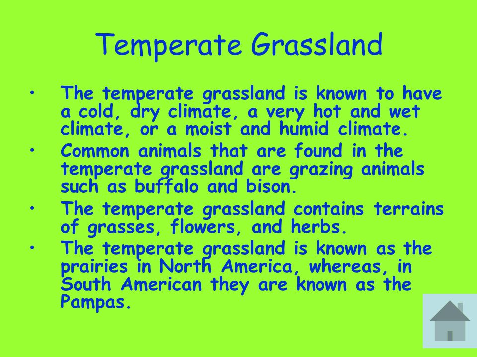 Temperate Grassland The temperate grassland is known to have a cold, dry climate, a very hot and wet climate, or a moist and humid climate.