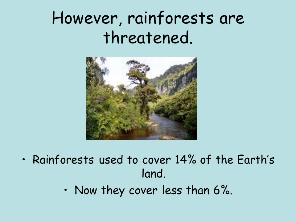 However, rainforests are threatened.