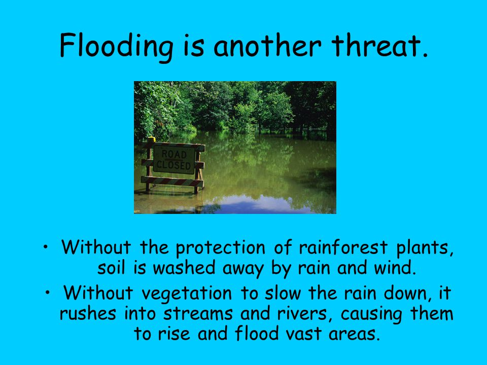 Flooding is another threat.