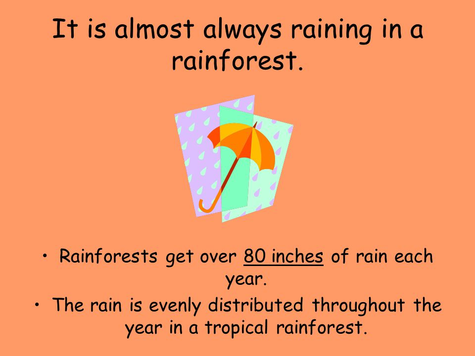 It is almost always raining in a rainforest.