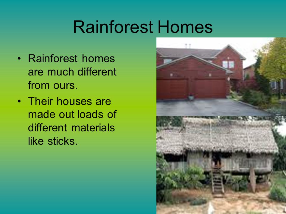 Rainforest Homes Rainforest homes are much different from ours.