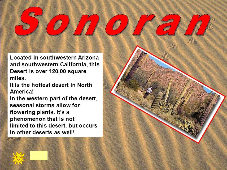 Sonoran Located in southwestern Arizona