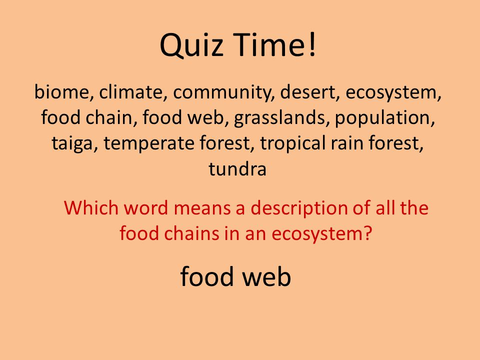 Which word means a description of all the food chains in an ecosystem