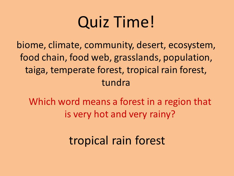 Which word means a forest in a region that is very hot and very rainy