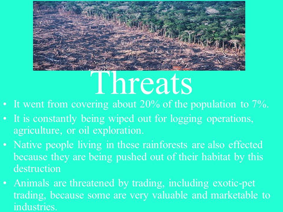 Threats It went from covering about 20% of the population to 7%.
