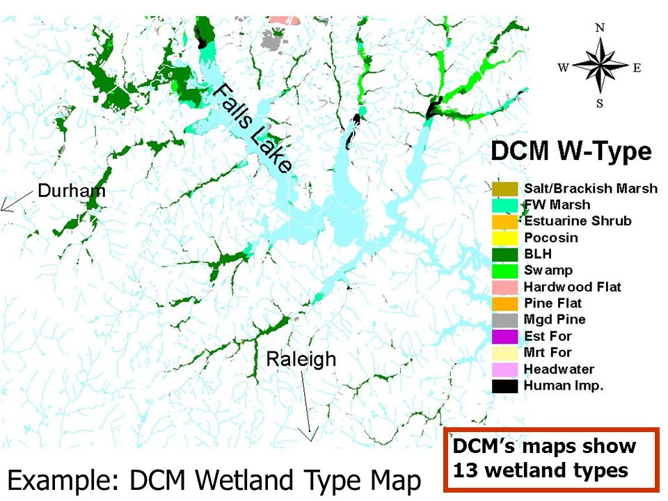 Example: DCM Wetland Type Map
