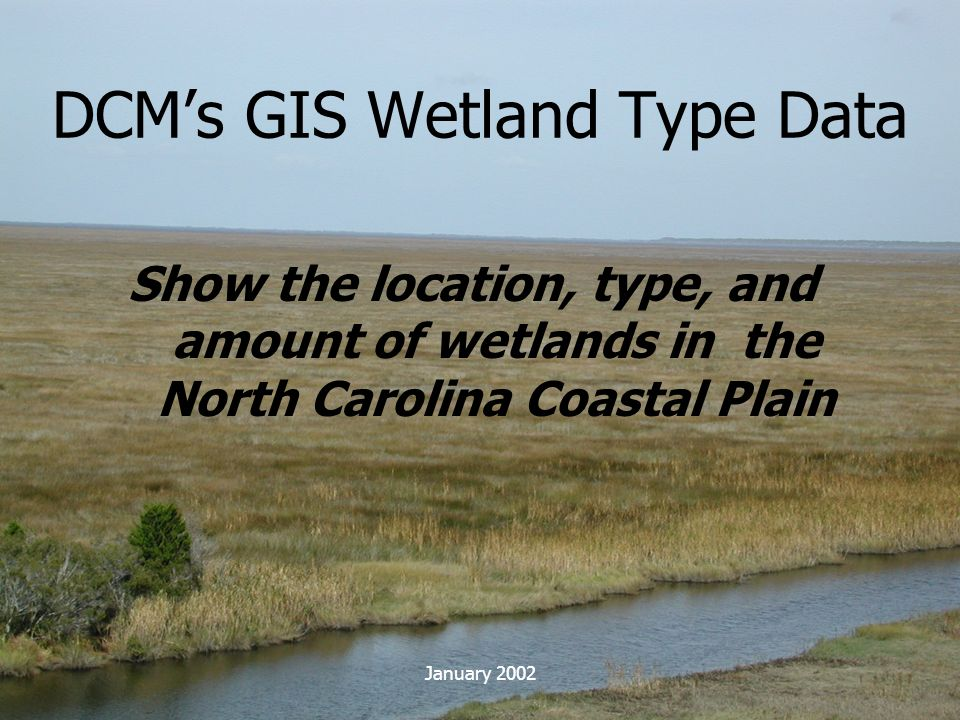 DCM's GIS Wetland Type Data