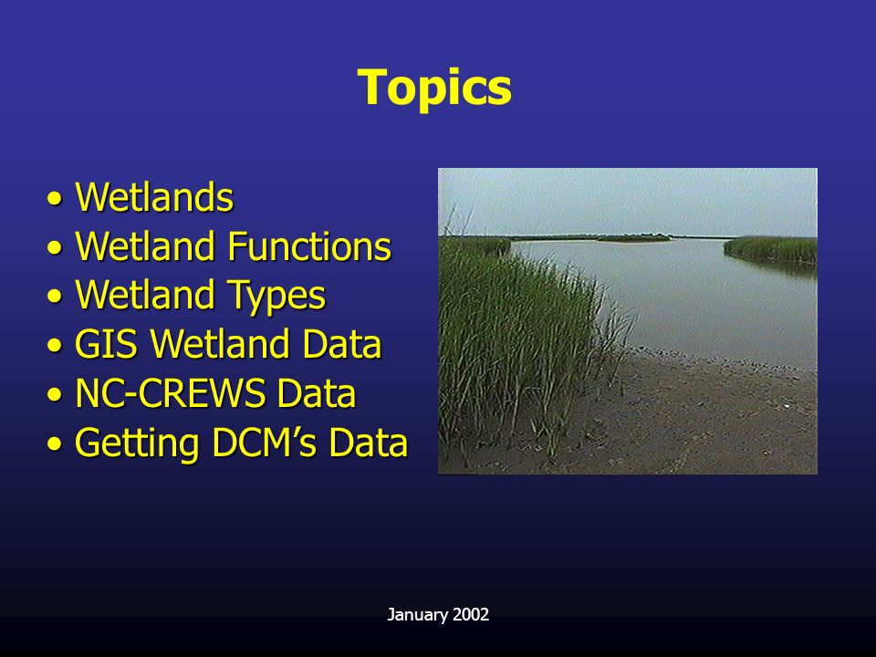 Topics Wetlands Wetland Functions Wetland Types GIS Wetland Data