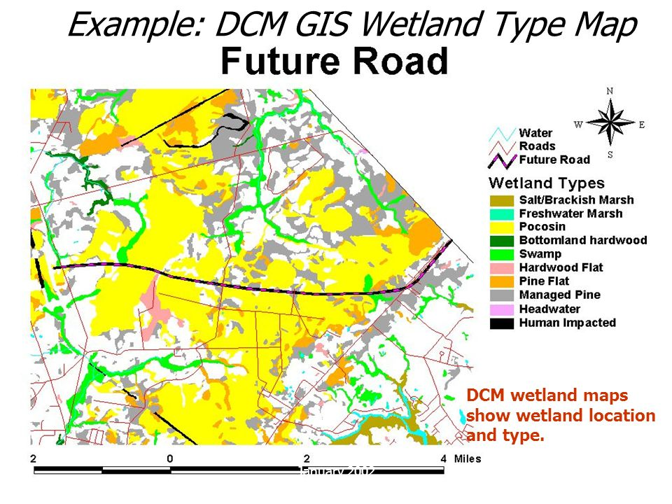 Example: DCM GIS Wetland Type Map
