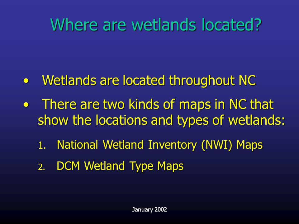 Where are wetlands located