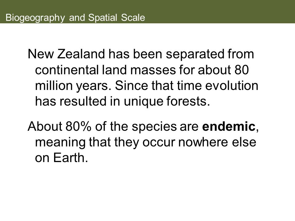Biogeography and Spatial Scale