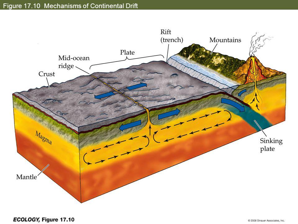 Figure 17.10 Mechanisms of Continental Drift