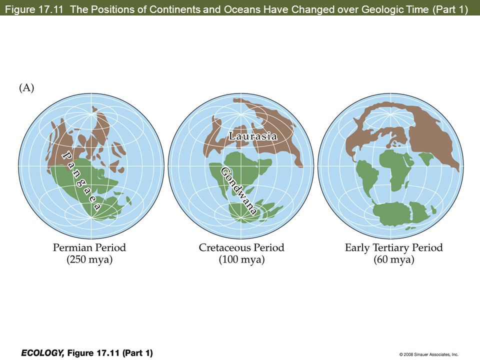 Figure 17.11 The Positions of Continents and Oceans Have Changed over Geologic Time (Part 1)