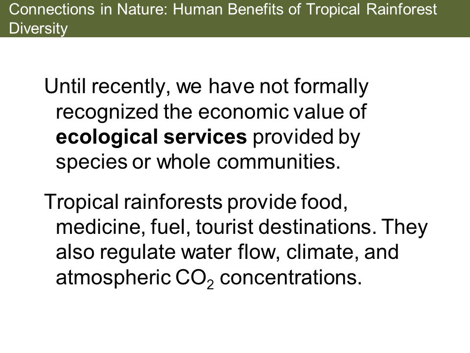 Connections in Nature: Human Benefits of Tropical Rainforest Diversity