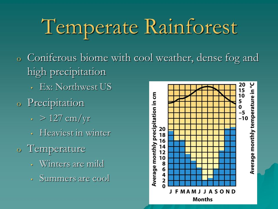 Temperate Rainforest Coniferous biome with cool weather, dense fog and high precipitation. Ex: Northwest US.