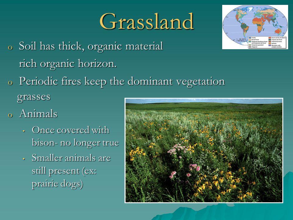Grassland Soil has thick, organic material rich organic horizon.