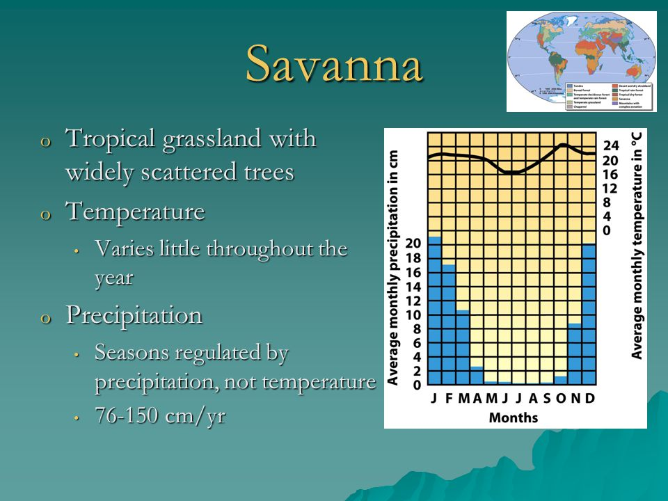Savanna Tropical grassland with widely scattered trees Temperature