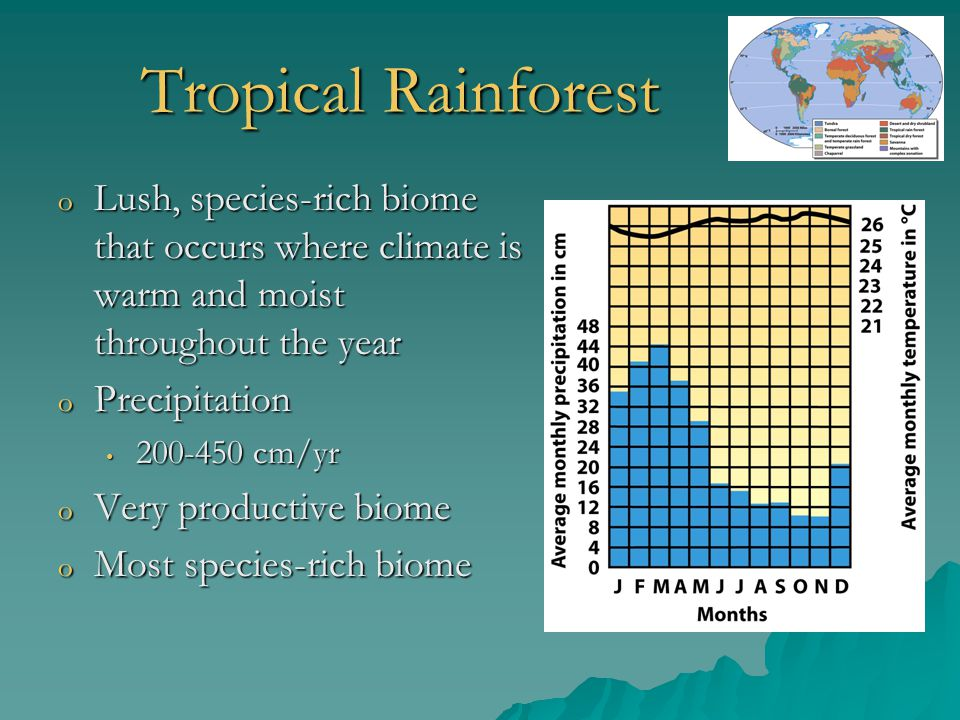Tropical Rainforest Lush, species-rich biome that occurs where climate is warm and moist throughout the year.