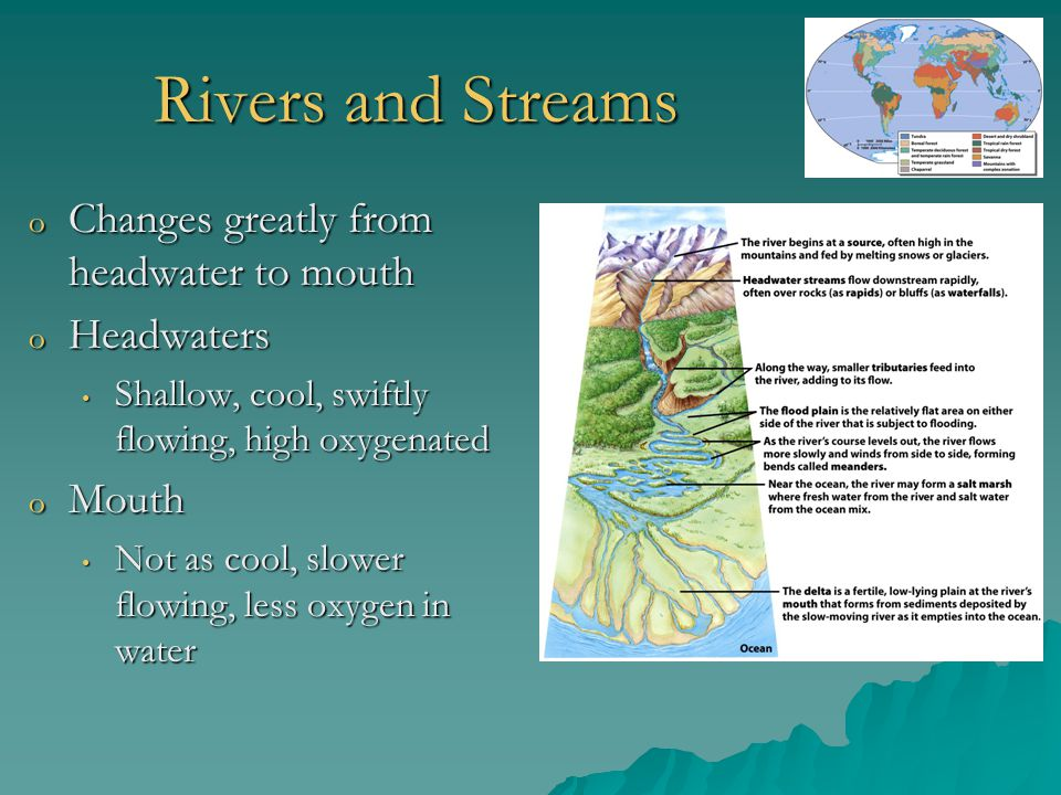Rivers and Streams Changes greatly from headwater to mouth Headwaters