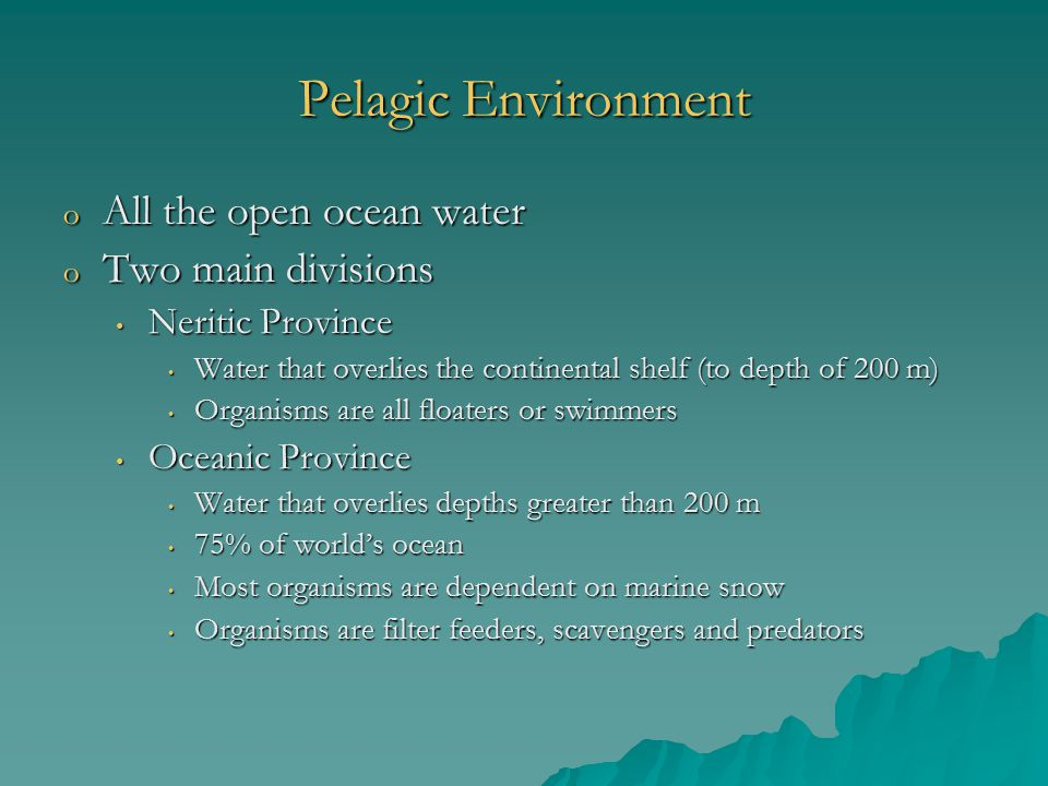 Pelagic Environment All the open ocean water Two main divisions