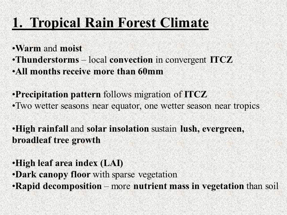 1. Tropical Rain Forest Climate