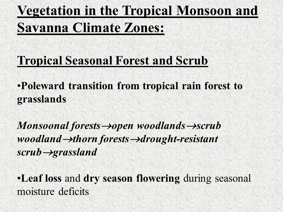 Vegetation in the Tropical Monsoon and Savanna Climate Zones: