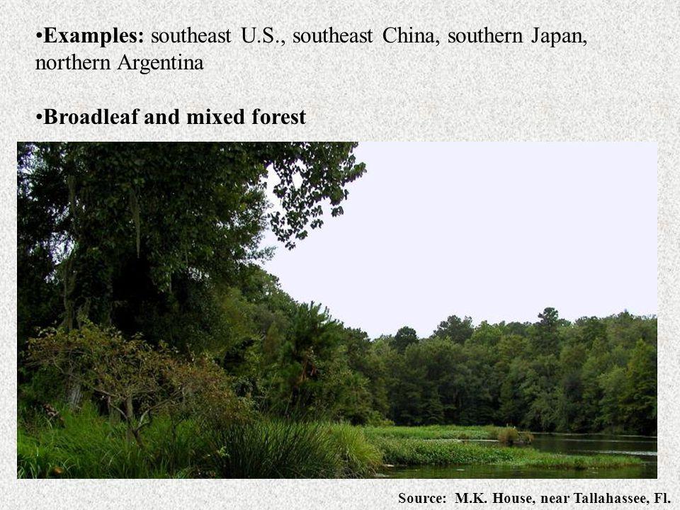Examples: southeast U.S., southeast China, southern Japan,