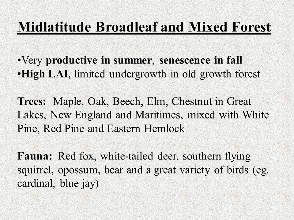 Midlatitude Broadleaf and Mixed Forest