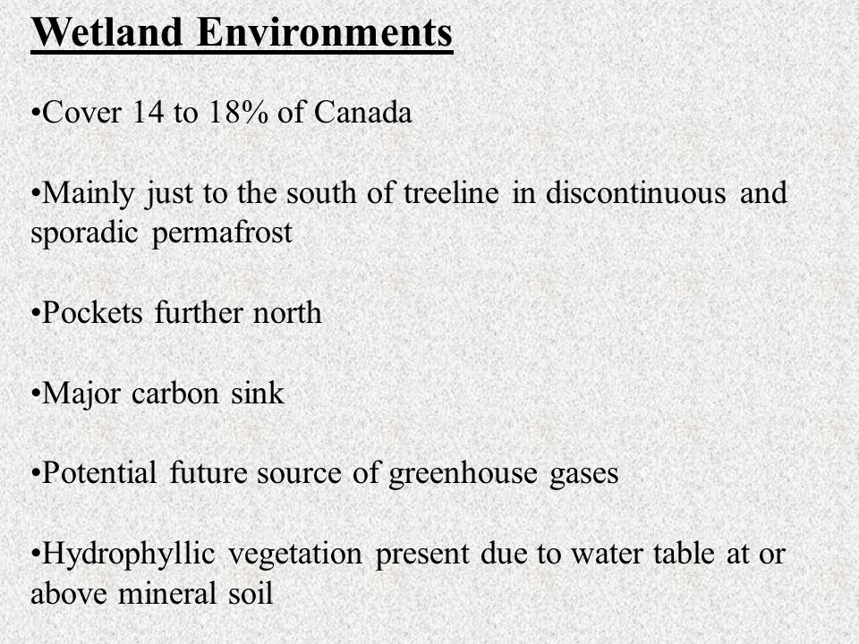 Wetland Environments Cover 14 to 18% of Canada