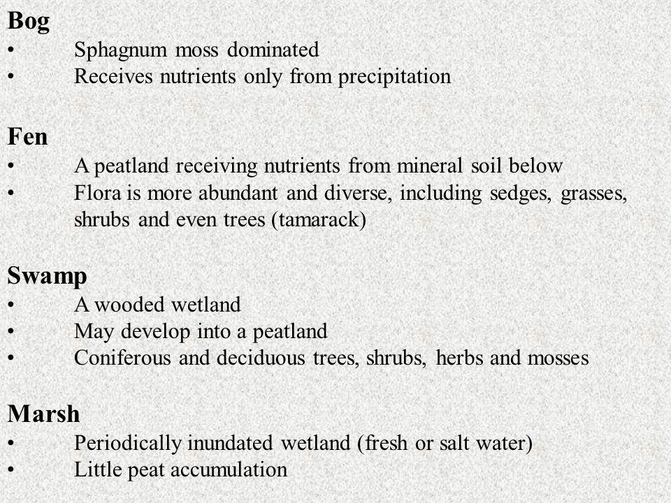 Bog Fen Swamp Marsh Sphagnum moss dominated