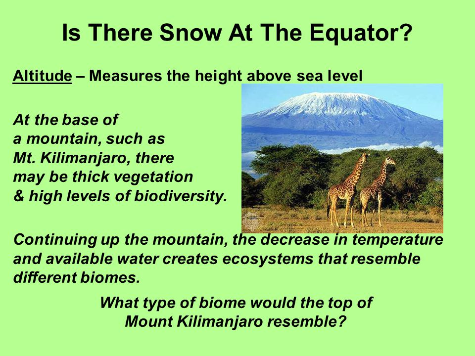Is There Snow At The Equator