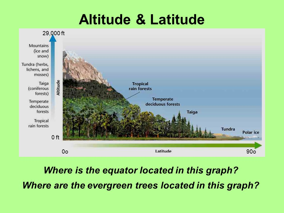 Altitude & Latitude Where is the equator located in this graph