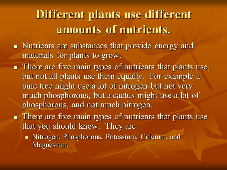 Different plants use different amounts of nutrients.