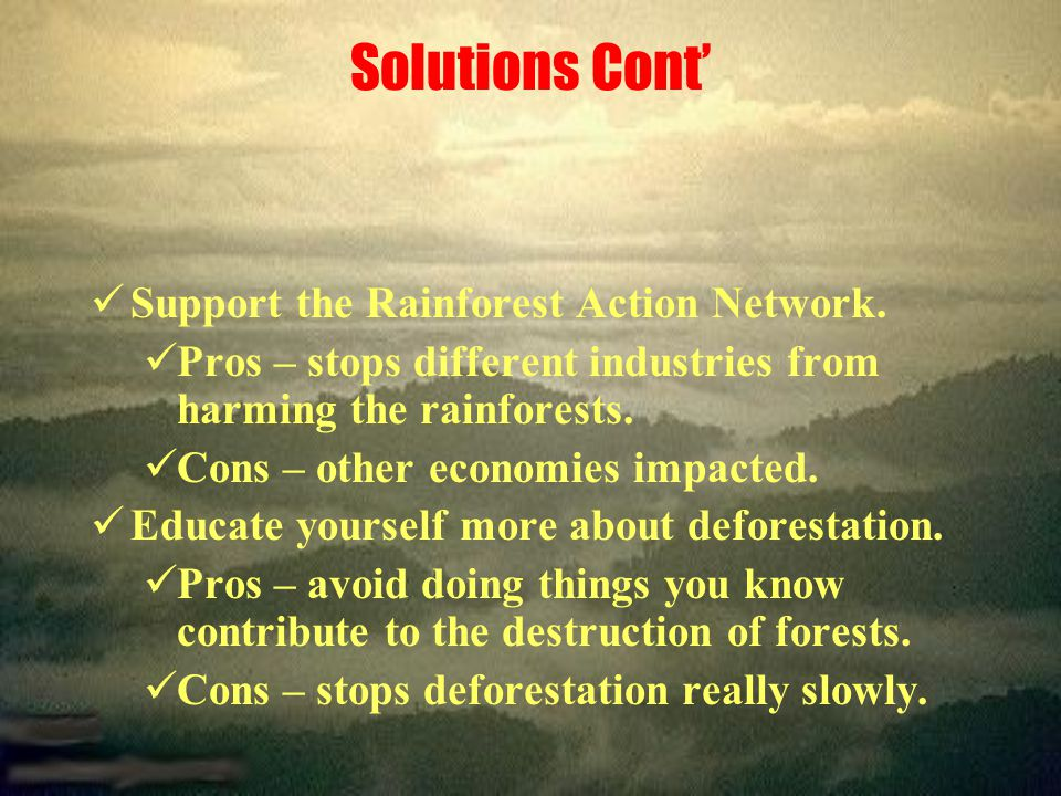 Solutions Cont' Support the Rainforest Action Network.