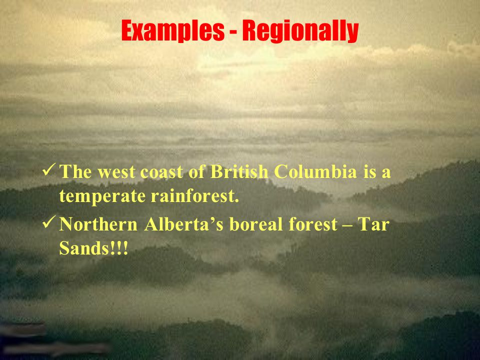 Examples - Regionally The west coast of British Columbia is a temperate rainforest.