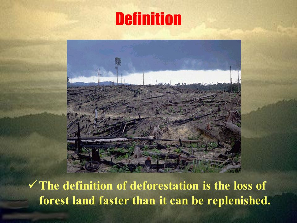 Definition The definition of deforestation is the loss of forest land faster than it can be replenished.
