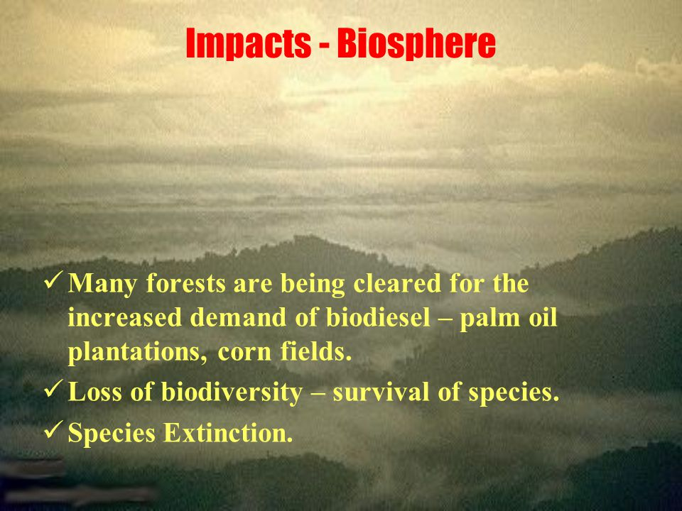Impacts - Biosphere Many forests are being cleared for the increased demand of biodiesel – palm oil plantations, corn fields.