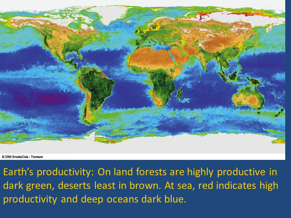 Earth's productivity: On land forests are highly productive in dark green, deserts least in brown.