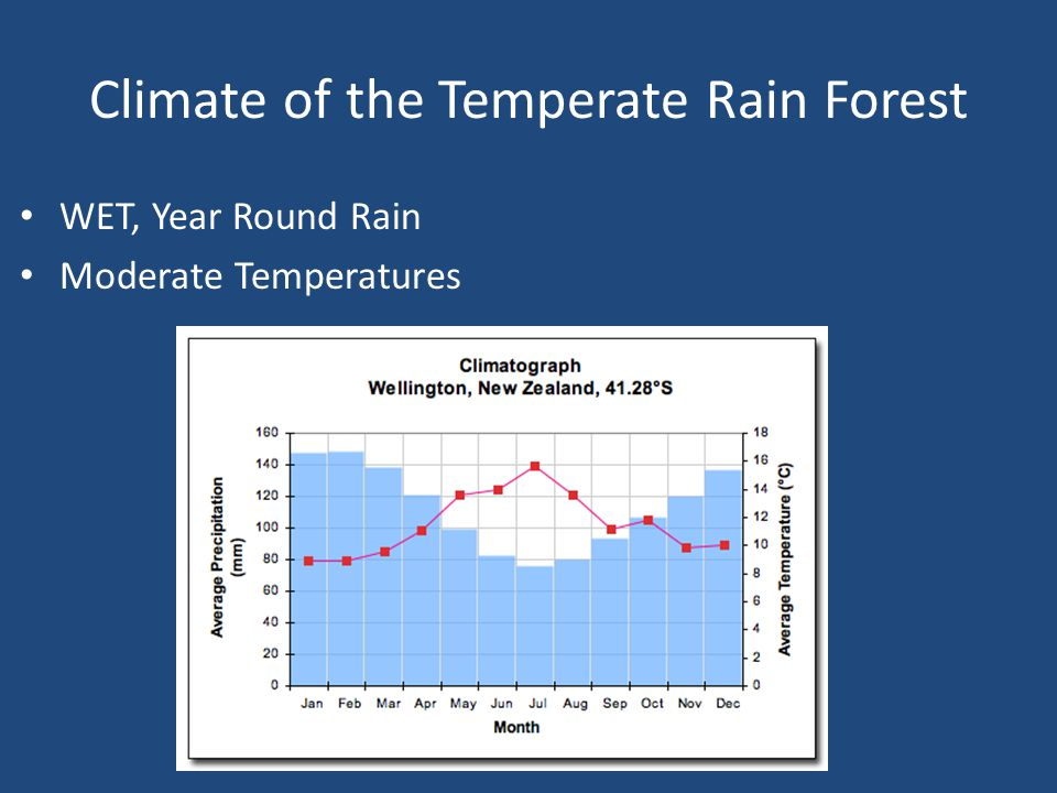 Climate of the Temperate Rain Forest