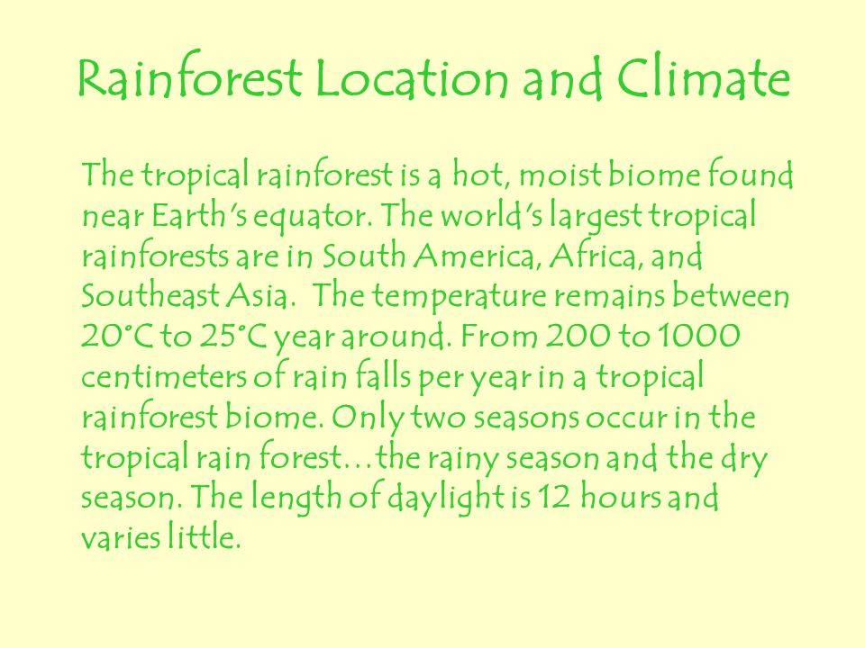 Rainforest Location and Climate