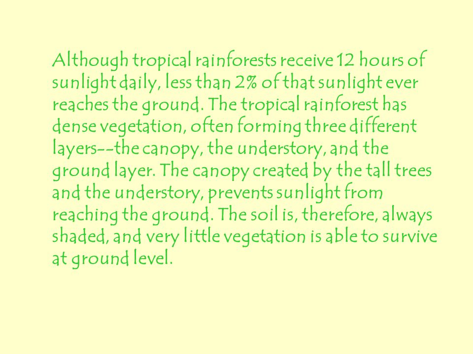 Although tropical rainforests receive 12 hours of sunlight daily, less than 2% of that sunlight ever reaches the ground.