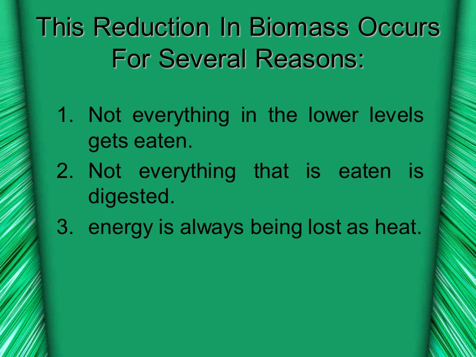 This Reduction In Biomass Occurs For Several Reasons: