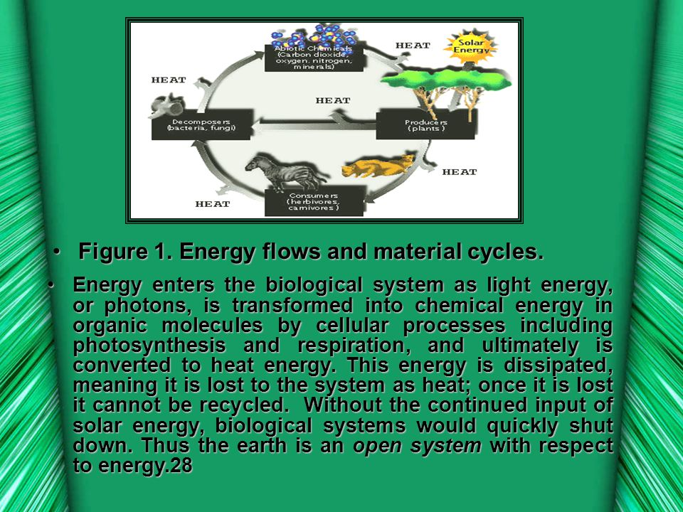 Figure 1. Energy flows and material cycles.