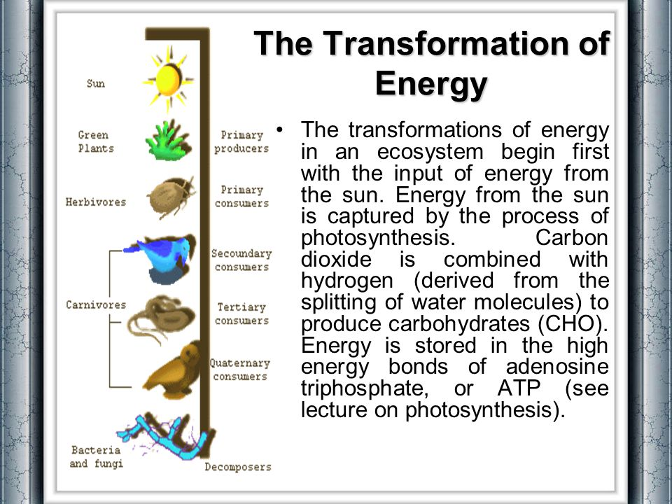 The Transformation of Energy