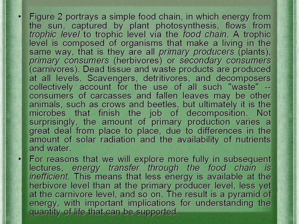 Figure 2 portrays a simple food chain, in which energy from the sun, captured by plant photosynthesis, flows from trophic level to trophic level via the food chain. A trophic level is composed of organisms that make a living in the same way, that is they are all primary producers (plants), primary consumers (herbivores) or secondary consumers (carnivores). Dead tissue and waste products are produced at all levels. Scavengers, detritivores, and decomposers collectively account for the use of all such waste -- consumers of carcasses and fallen leaves may be other animals, such as crows and beetles, but ultimately it is the microbes that finish the job of decomposition. Not surprisingly, the amount of primary production varies a great deal from place to place, due to differences in the amount of solar radiation and the availability of nutrients and water.